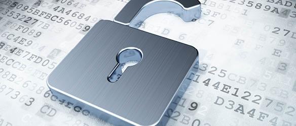 اینفوگرافیک نقش عامل انسانی در محافظت از دادهها