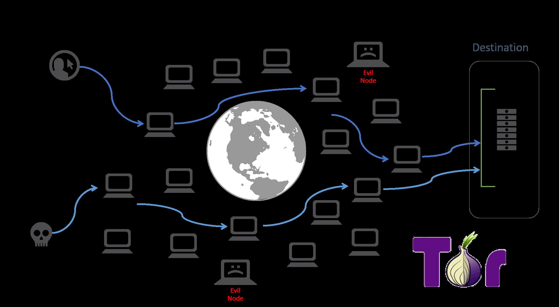 تور چگونه از شما در برابر شبکه تور محافظت میکند